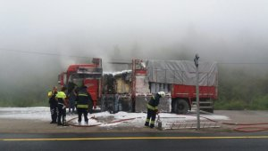 İnşaat malzemesi yüklü kamyon Bolu Dağında yandı