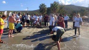1,5 yıl tedavi gören caretta caretta denize bırakıldı