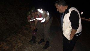 Gazeteci Şehitoğlu'na yapılan saldırıya MGC'den kınama