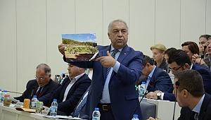 İzmir Büyükşehir Meclisinde zeytin ağaçları gerginliği