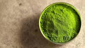 Matcha Çayı Ne İçin Kullanılır? Kullanım Alanları