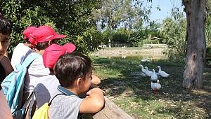 Bayraklılı Çocuklar Doğal Yaşam Parkını Gezdi