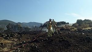 Aliağa'da makilik alanda yangın