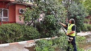 Büyükşehir'den okullarda temizlik hamlesi