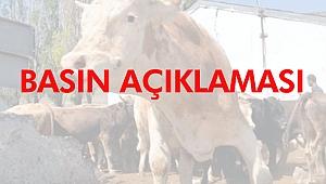 """İl Tarım Müdürlüğünden İzmir'deki """"şarbon"""" iddialarına yalanlama"""