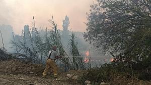 İzmir'de makilik alanda çıkan yangın paniğe sebep oldu