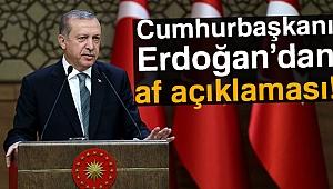 Cumhurbaşkanı Erdoğan'dan af açıklaması!