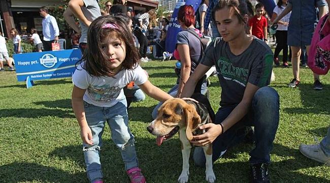 Hayvanseverler Pati Festivali'nde buluştu