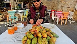 40 yıldır kaktüs meyvesi satıyor