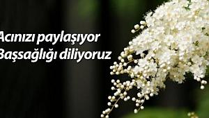 Gazeteci Halide Demir'in acı günü