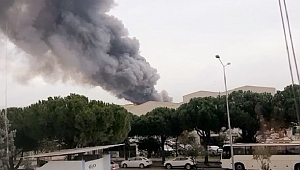 Yanan kuruyemiş fabrikasında zarar 5 milyon TL