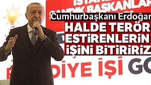 Cumhurbaşkanı Erdoğan: 'Halde terör estirenlerin işini bitiririz'