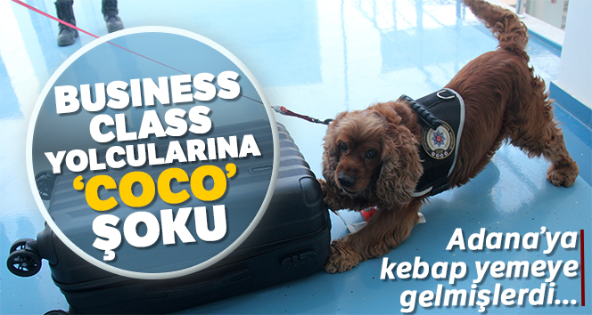 Business Class yolcularına