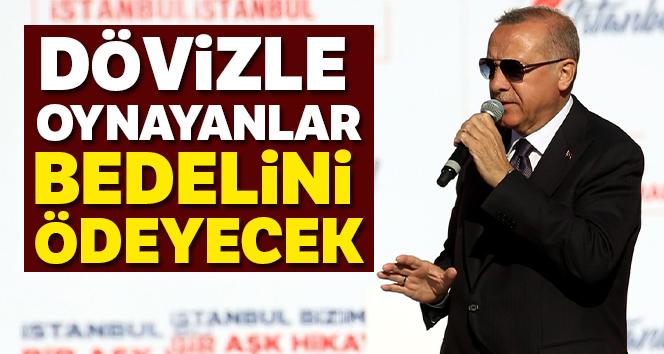 Erdoğan: 'Dövizle oynayanlar bedelini ödeyecek'
