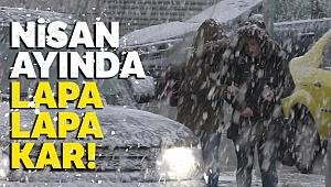 Ardahan'a lapa lapa kar yağıyor