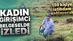 Kadın girişimci Türkiye'nin en büyük ipek böceği üretimi için dut bahçesi kurdu