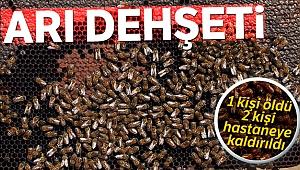 Arı dehşeti! 1 ölü, 2 yaralı