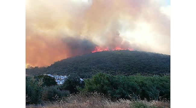 Dsi Ekipleri Ön Saflarda Yangınla Savaştı