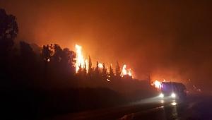 Özdere'de dumanların etkilediği iki otel boşaltıldı