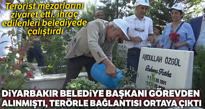 Görevden alınan Diyarbakır Belediye Başkanının terör örgütü ile bağlantısı