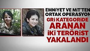 Gri kategoride aranan iki terörist yakalandı