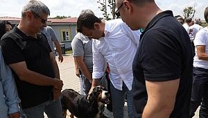 İmamoğlu hayvan barınağını ziyaret etti