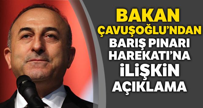Bakan Çavuşoğlu:'Operasyon Milletler Güvenlik Konseyi'nin terörle mücadeleye ilişkin kararları gereğince icra edilmekte'