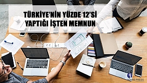 Türkiye'nin Yüzde 12'Si Yaptığı İşten Memnun