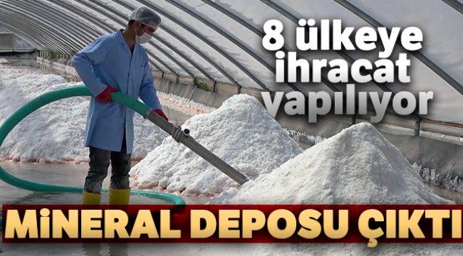 8 ülkeye ihracatı yapılan 'Delice Tuzu' mineral deposu çıktı