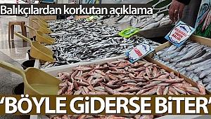 Balıkçılar açıkladı: 'Böyle giderse balıkçılık biter'