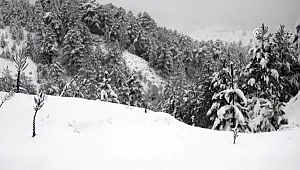 Yüksek kesimlerde kar yağışı etkisini sürdürüyor