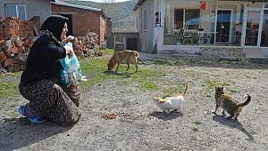 Kedi ve köpeklerine yiyecek isteyen kadının yüzünü belediye ekipleri güldürdü