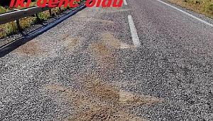 Foça'da bariyerlere çarpan motosikletteki iki genç öldü