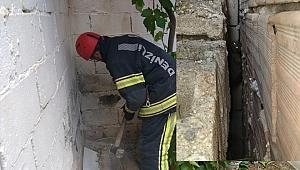 Sıkışan kediyi kurtarmak için duvarı deldiler