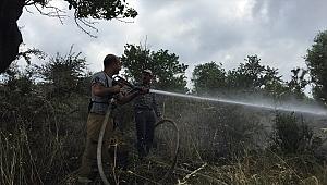Tire'de makilik alanda çıkan yangın söndürüldü.