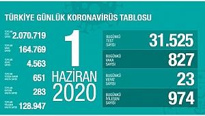 Türkiye'de son 24 saatte 974 kişi daha iyileşti