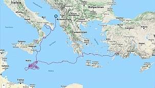 """""""Caretta Tuba"""" bir yılda 5 bin 500 kilometre yol aldı"""