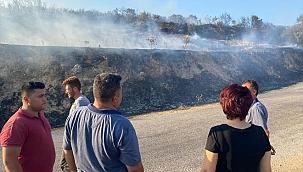 Kiraz'da çıkan orman yangını kontrol altına alındı