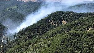 OGM Müdürü Karacabey: Geçen yıla göre yangın sayısında yüzde 30'luk bir artış görüyoruz