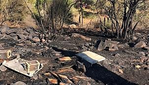 Orman yangınıyla ilgili bir arıcı gözaltına alındı