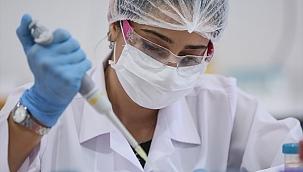 Yerli antikor testi yaklaşık 50 ülkeye ihraç edildi