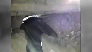Arama-kurtarma ekipleri, yıkılan binanın enkazında kalan bir kediyi kurtardı