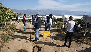 Uzmanlar Sarıgöl'de oluşan geniş yarıkları inceledi