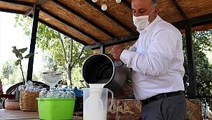 Aydın'da üretilen deve sütüne talep arttı
