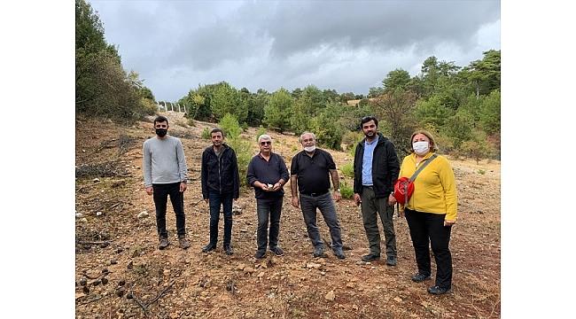 Muğla'da fosil kazı çalışmaları yeniden başlayacak