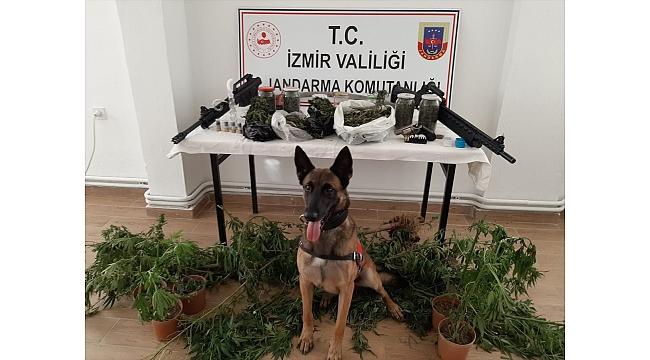 Uyuşturucu operasyonunda 21 şüpheli yakalandı