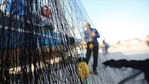 Kısmi hamsi avı yasağı 7 Şubat saat 00.01'den itibaren sona erecek