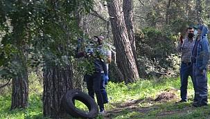 Tıpkı filmlerdeki gibi! Kendisini ağaca iple asan adam son anda kurtarıldı