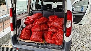 Kaçak avlanmış 400 kilogram midye ele geçirildi