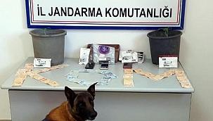 Muğla'da torbacı operasyonu: 4 gözaltı